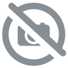THE ALPINE 4000M PEAKS BY THE CLASSIC ROUTES, RICHARD GOEDEKE